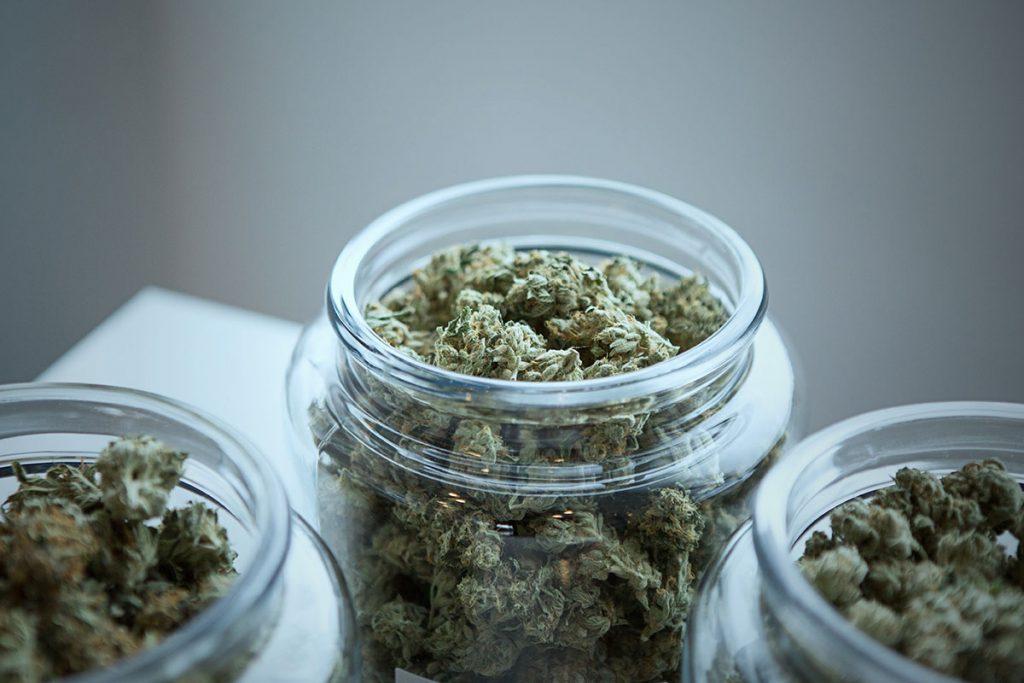Certificate Use Of Marijuana